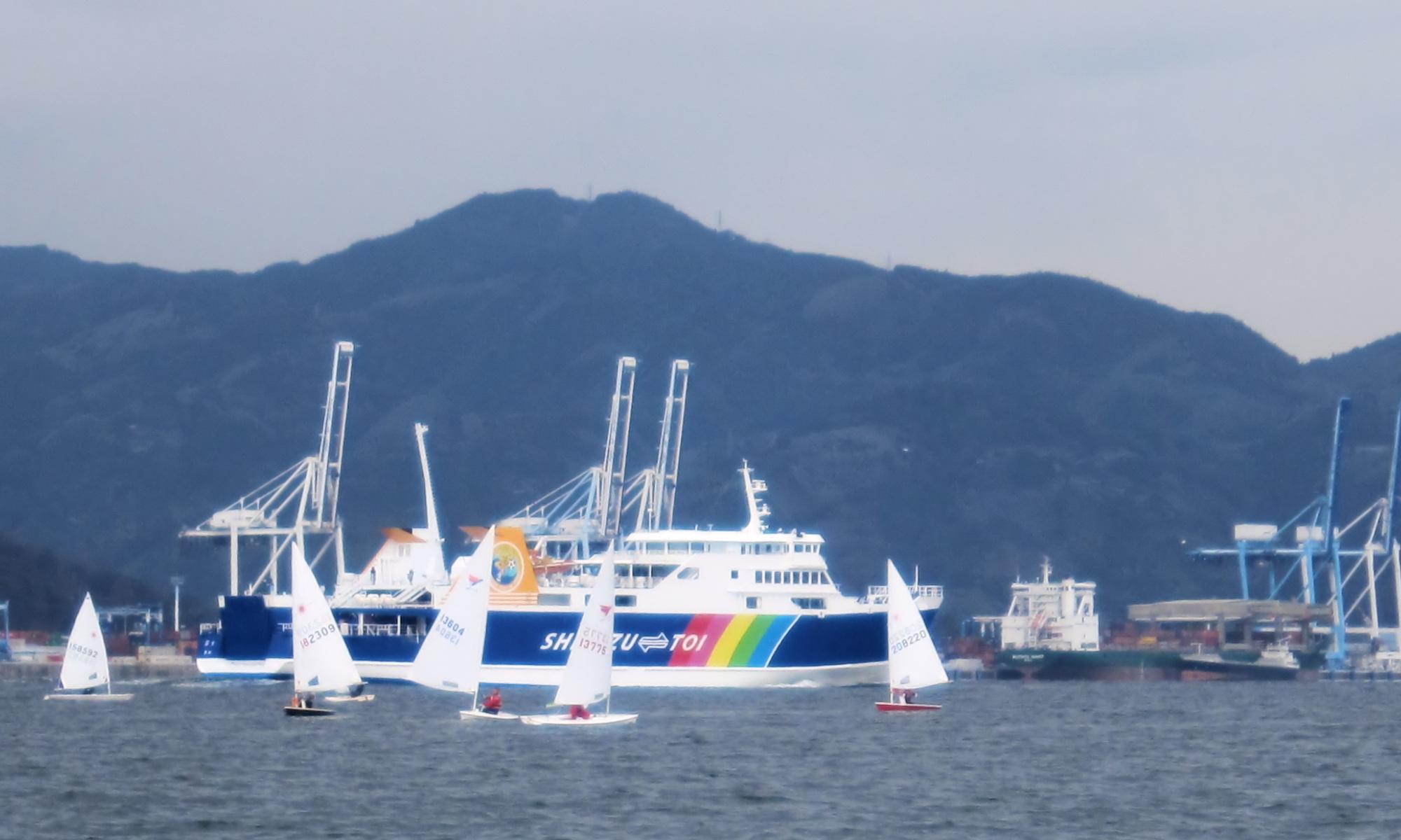 日本シーホッパー協会